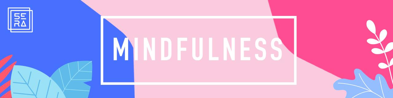 Mindfullness: A transformação das habilidades mentais