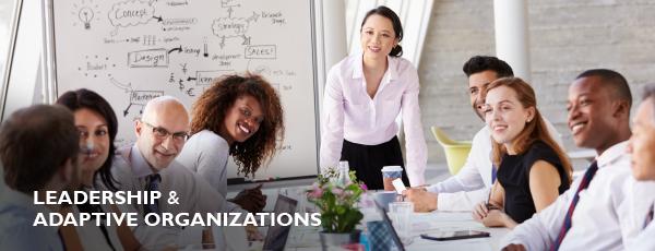 Leadership and Adaptive Organizations