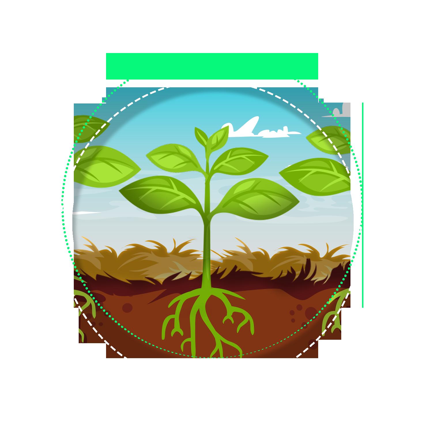 Fundo verde com plantas