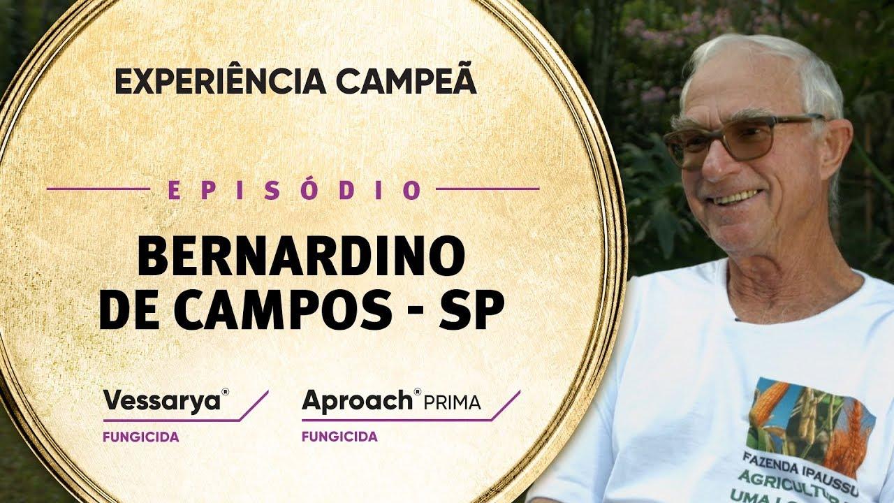 EP 11: Bernardino de Campo/SP