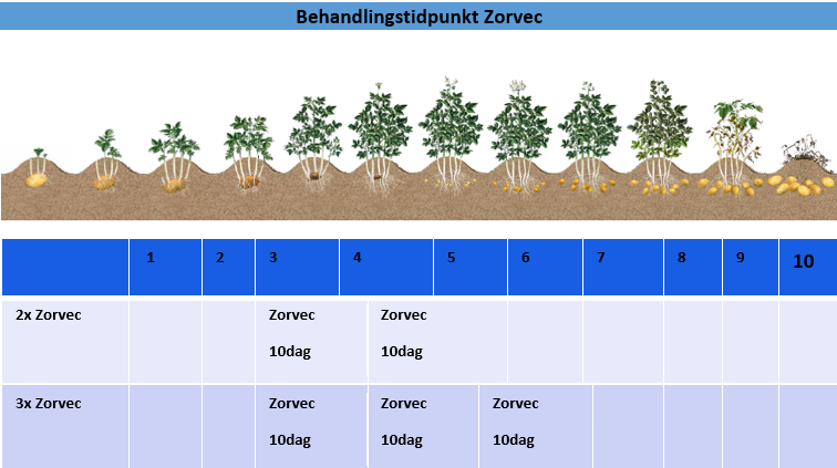 Behandlingstidpunkt Zorvec