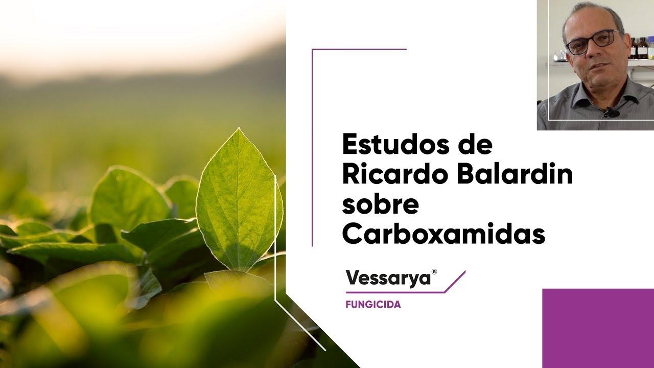 O Ph.D. Ricardo Balardin lista as principais estratégias contra a ferrugem asiática