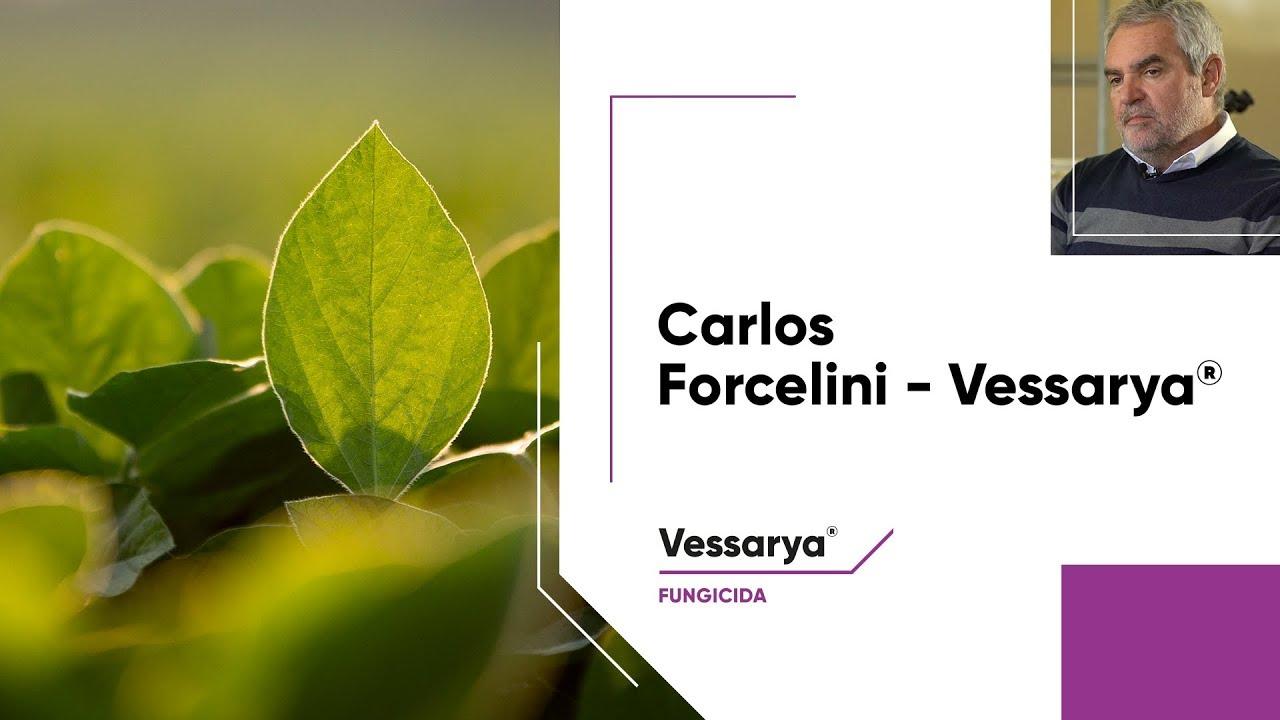 Dr. Carlos Forcellini aborda o cenário atual da Ferrugem Asiática