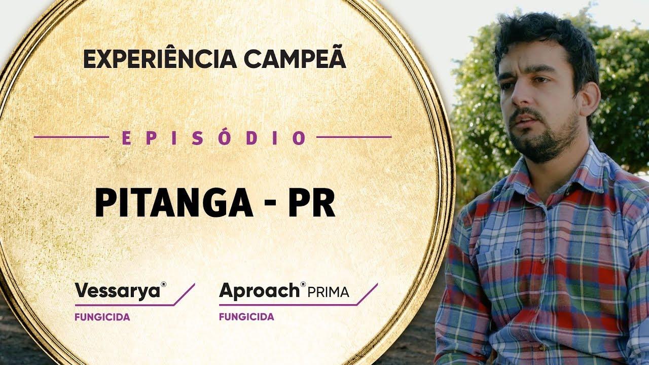 EP 04: Pitanga/PR