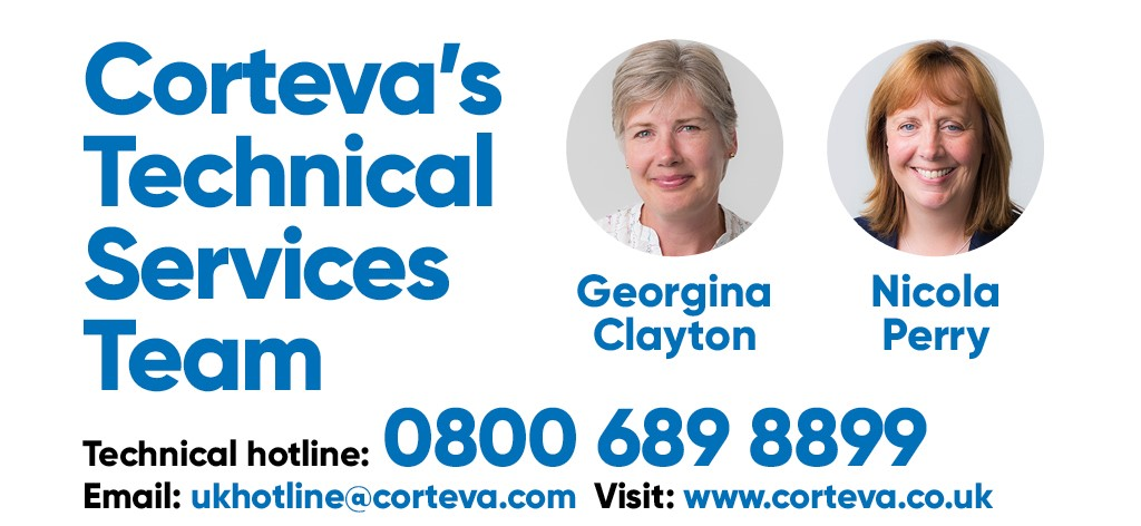 Technical Services team image