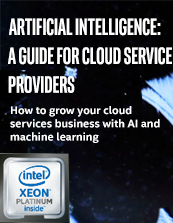 Artificial Intelligence: A Guide for Cloud Service Providers