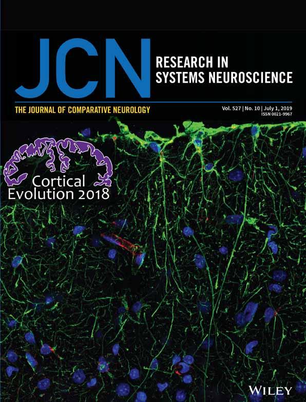 Journal of Comparative Neurology